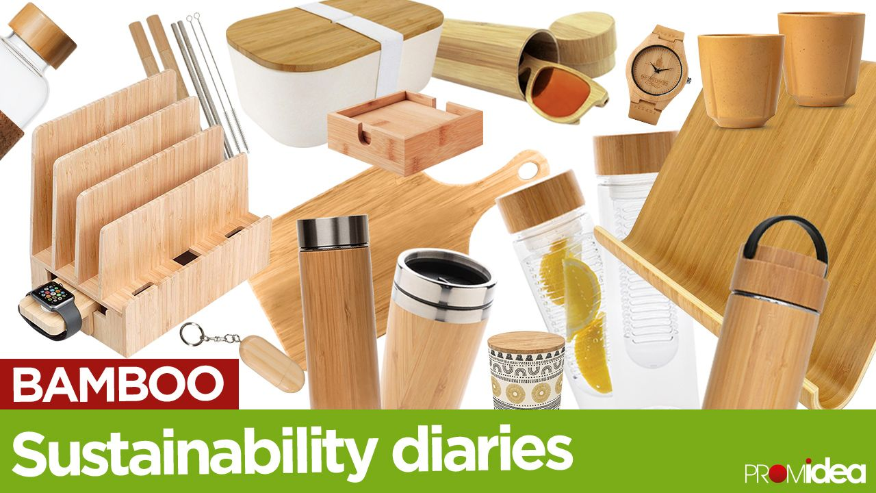 Sustainability Diaries: Chapter 2 - Bamboo